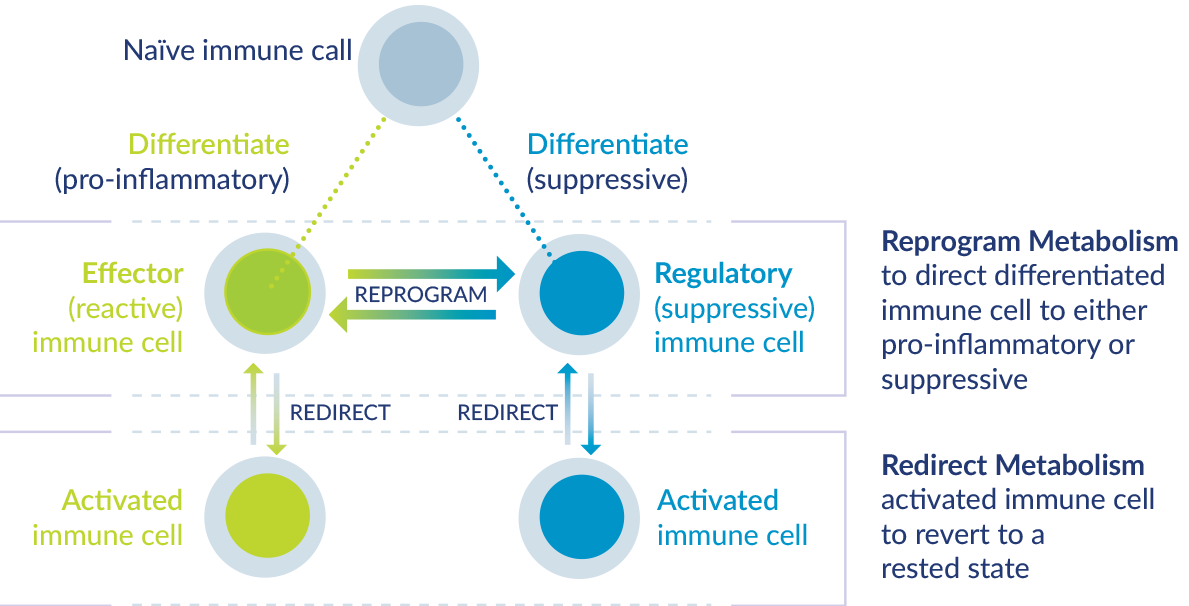 Reprogram metabolism to direct differentiated immune cells to either pro-inflammatory or suppresive