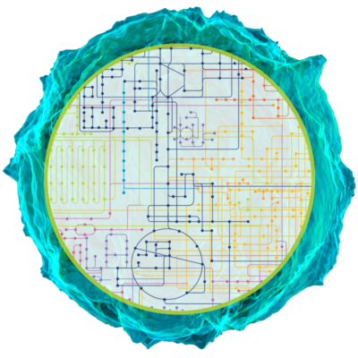 MasterCell_wDiagram